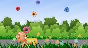 Flower Catcher